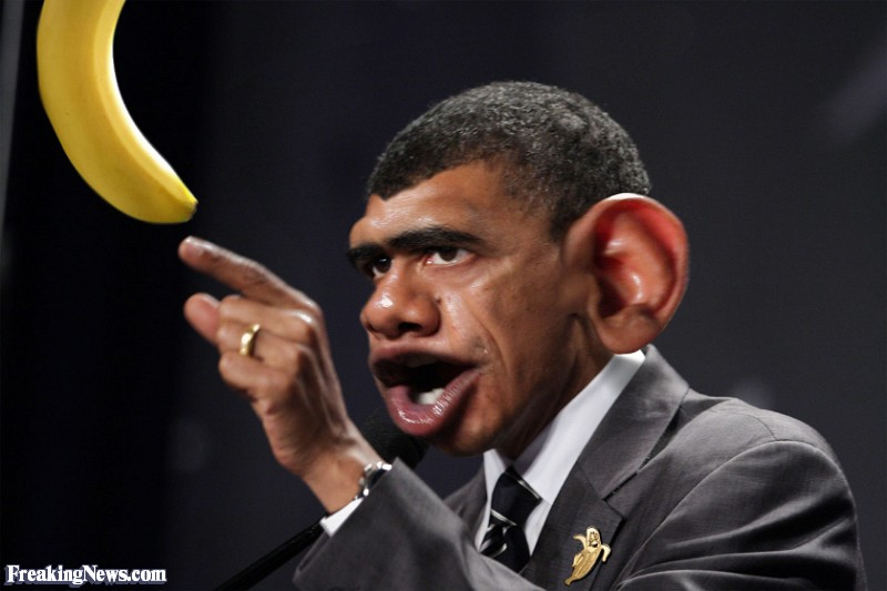 barack-obama-monkey-64727.jpeg