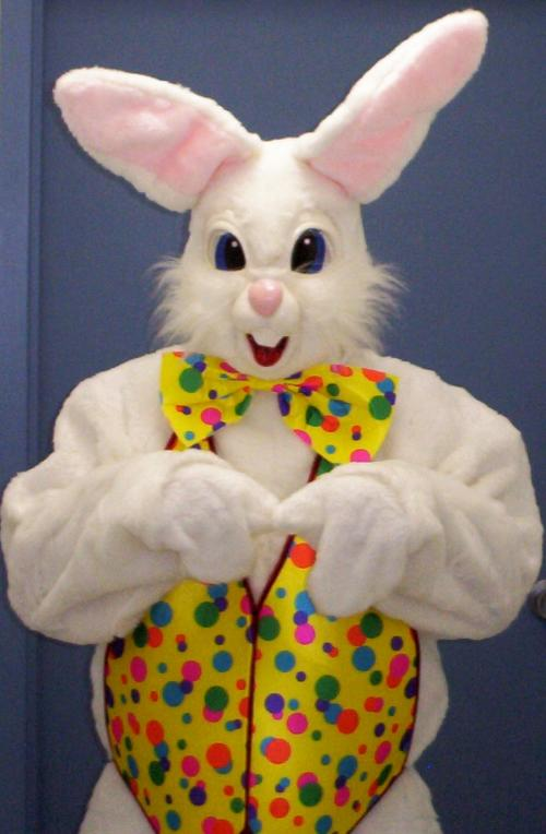 Show Me Pictures Of The Easter Bunny
